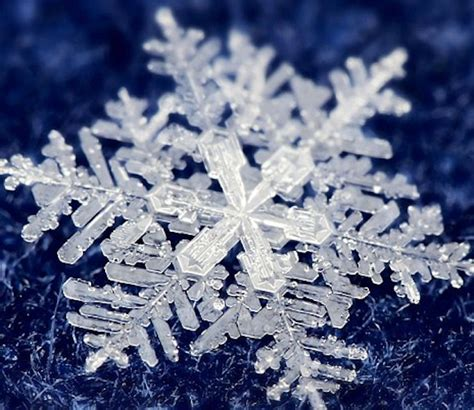 snowflake and snow crystal photographs a reason to welcome winter prestonbailey com