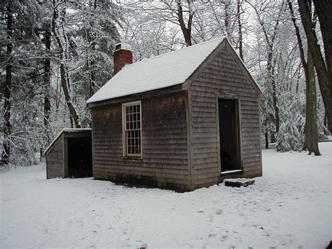 thoreau cabin 7 interesting facts about henry david thoreau my harvard
