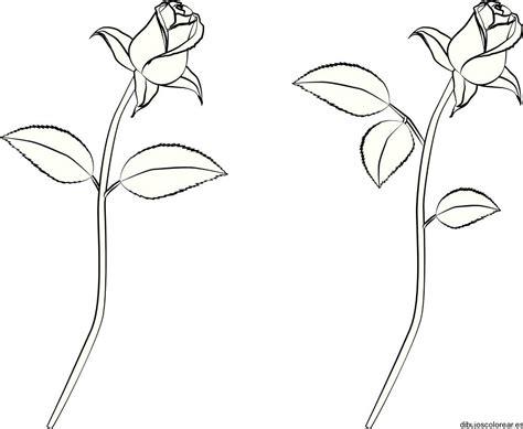imagenes para dibujar goticas rosas dibujos para colorear