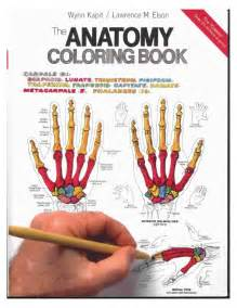 anatomy coloring book kapit human anatomy coloring book kapit elson periodic tables
