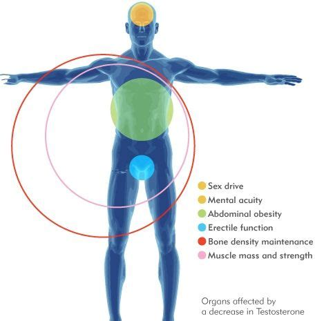 crossdresser signs symptoms in men herbal health 17 best men s health images on pinterest health day