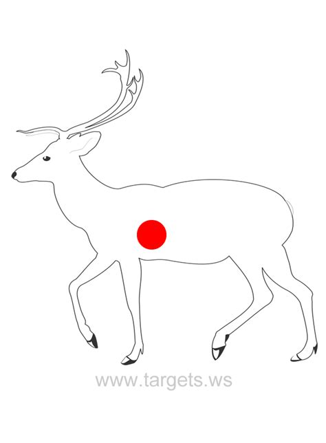 printable whitetail deer targets pin free whitetail targets pictures on pinterest