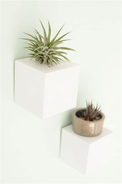 wall mounted plant holder this week on ehow wall mounted plant stands dream green diy