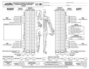 asin full form international standards for neurological classification of
