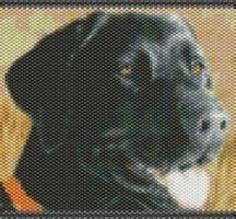 pattern lab deutsch 79 best peyote dogs images on pinterest beading
