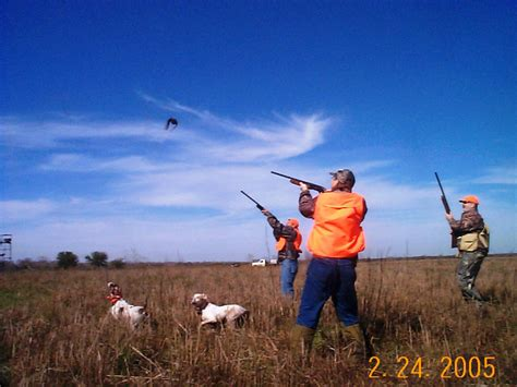 how to a to bird hunt southwest louisiana chukar partridge hunt with your bird or ours