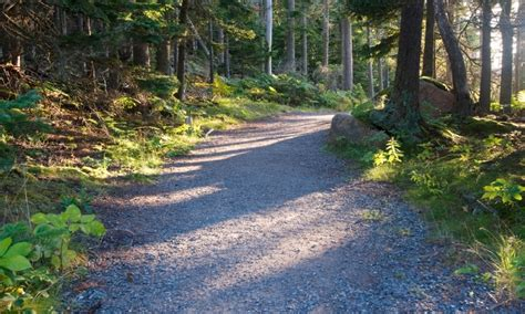Acadia National Park Cabins Pet Friendly by Bar Harbor Hiking Trails Maine Hikes Alltrips