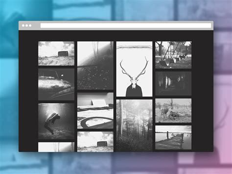 photography grid layout effect ideas for image grids codrops