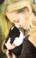 constant companion pet crematorium cleveland tn