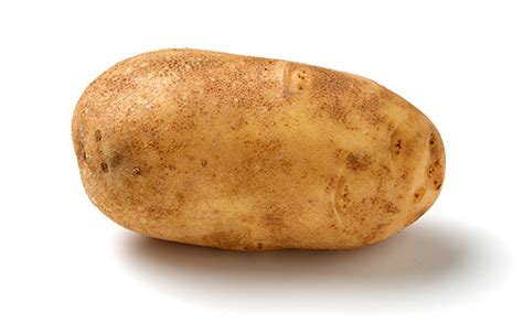 Potato Program by Small Potato Program Ecycleelectric