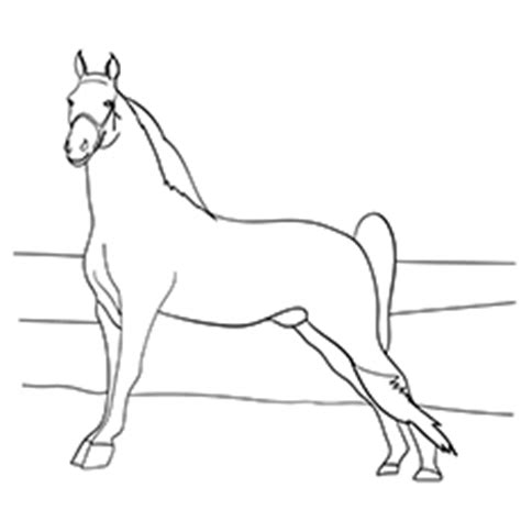 coloring pages of tennessee walking horses norwegian fjord coloring pages coloring pages