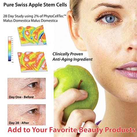 apple stem cell swiss apple stem cell anti aging extract phytocelltec