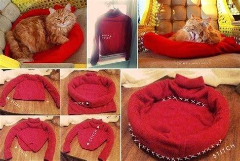 video cara membuat lu tidur sendiri bikin tempat tidur kucing sendiri yuk