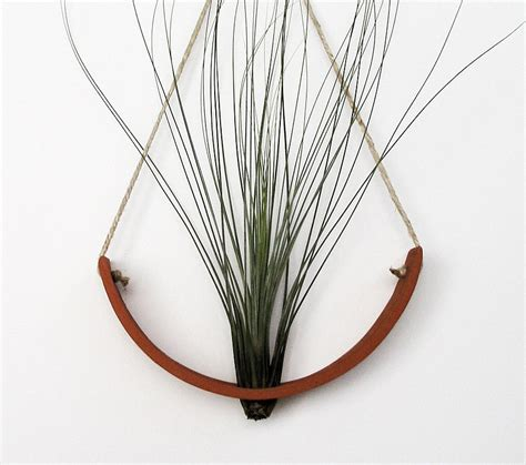 hanging air plant hanging air plant cradle tm natural terracotta planter