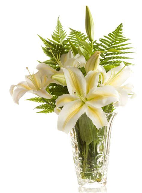 significato dei fiori lilium la purezza di un mazzo di gigli e il suo significato