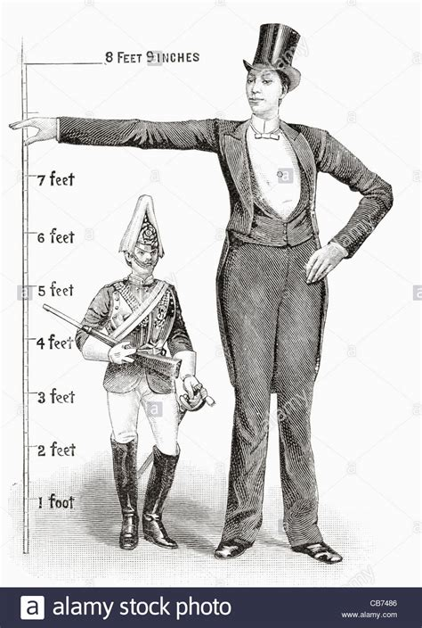 8 feet in inches franz winkelmeier aka giant of friedburg lenga 1860