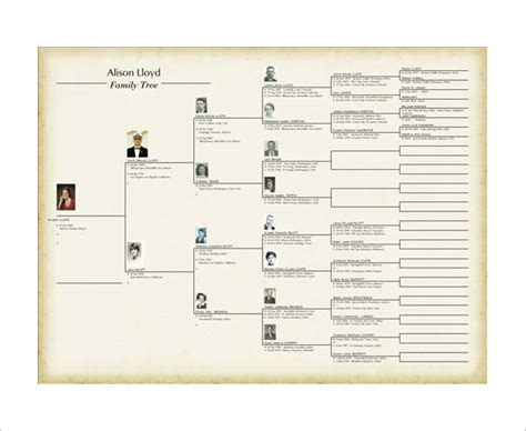 family genealogy book template family tree book template 9 free word excel pdf