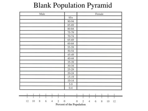 Population Pyramid Worksheet by Ppt Blank Population Pyramid Powerpoint Presentation