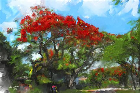 poinsiana tree decorations poinciana trees of coral gables painting by ted azriel