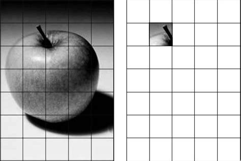 Drawing Grid by Using A Grid To Enlarge And Transfer An Image To Canvas