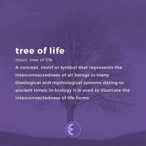 meaning of tree 25 beautiful tree of life meaning ideas on pinterest