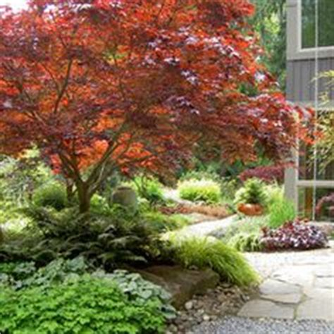 Pacific Northwest Garden Ideas 1000 Images About Nw Landscaping Ideas On Pinterest Landscape Design Pacific Northwest And