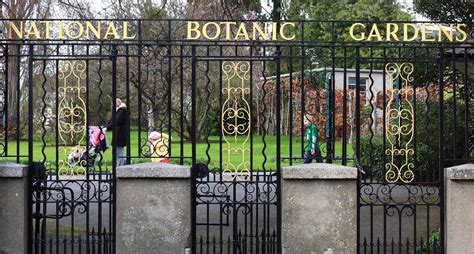 botanic gardens dublin survival guide dublin with food allergies a trip to the