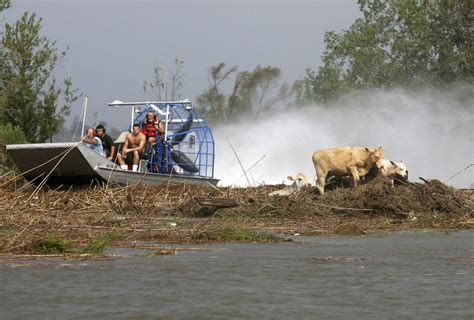 airboat pushes truck 17 best images about airboat on pinterest boats