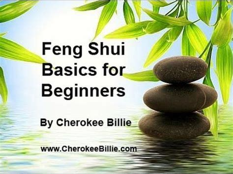 feng shui for beginners 1000 images about feung shui on pinterest money trees feng shui and money