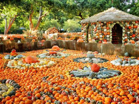 botanical gardens in the us best botanical gardens in the us our picks for the best