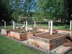 veggie patch ideas on pinterest worm farm compost and worms
