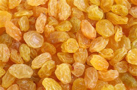 Golden Raisin golden raisins harvest to table