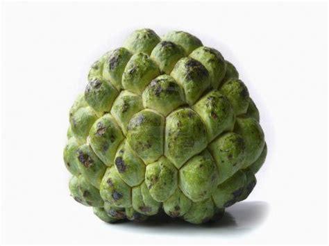 saffone  trading annona jus durian belanda jus