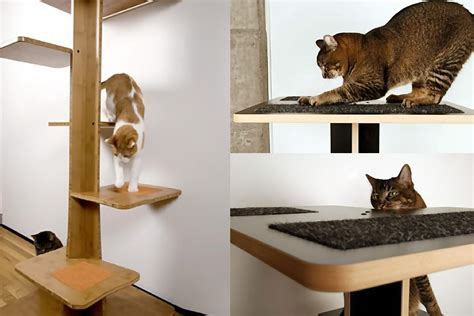Nice Homes Interior interesting and modern cat trees design for your lovable