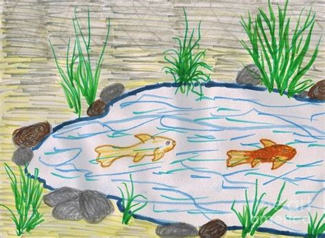 koi pond thediabeticspoon drawing realistic and stylish fish pond drawing medium litle pups