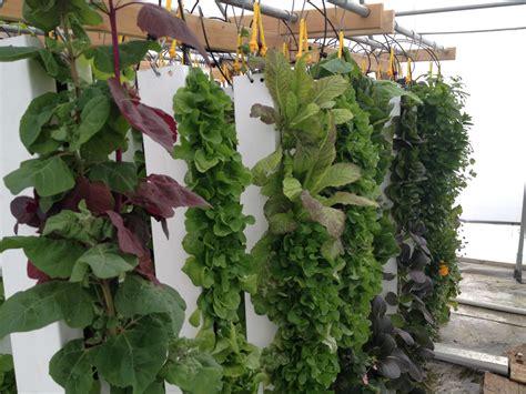 Grow Vertical Garden Ideas To Help Build A Spacing Saving Vertical Gardens