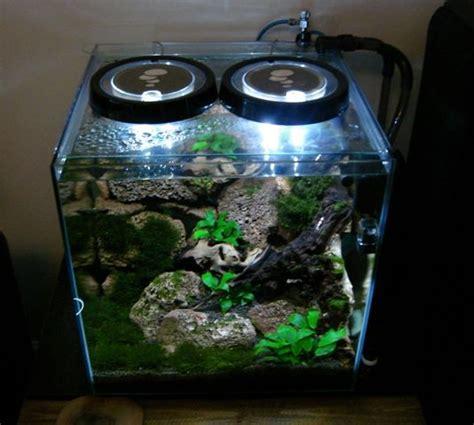 aquascape shrimp tank 708 best images about aquascaping planted tanks aquariums on pinterest aquarium