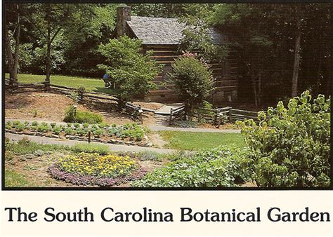 Sc Botanical Garden South Carolina Botanical Garden One Of The Popular Areas I Flickr