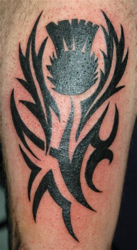 tribal tattoo glasgow tribal celtic chameleon tattoo tattoo studio in paisley