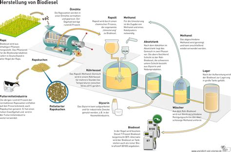 Microwave Zellent fnr biokraftstoffe herstellung