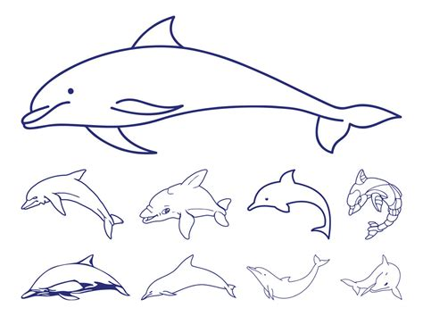 dolphin pattern drawing amuse cartoon outline dolphin and water splashes tattoo