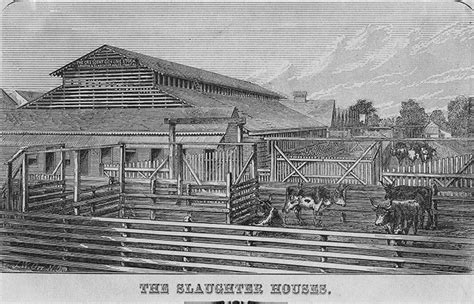 slaughterhouse on the house slaughter house cases 28 images in the time of mechanisation industrial floor