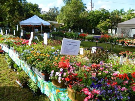 backyard market edison annual garden market flower garden shops and