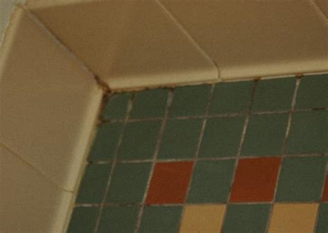 Bathroom Shower Tile Problems One Of The Pools Picture Of Disney S Saratoga