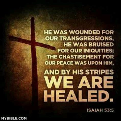 bruised and wounded struggling to understand books through his stripes we are healed praising his name daily