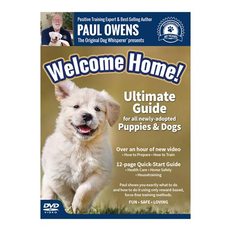 house insurance and dogs dog training dvd paul owens the original dog whisperer