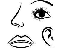 ramassage de nez d oeil d oreille et de bouche photos 26