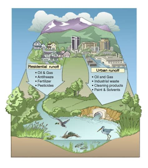 runoff diagram threats to water quality mcleanwater org
