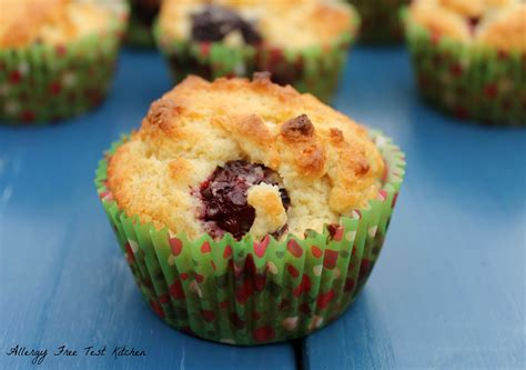 The Allergy Free Kitchen by Blackberry Muffins Recipes Dishmaps
