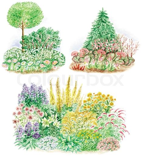 types of flower gardens watercolors painted pictures of garden design and